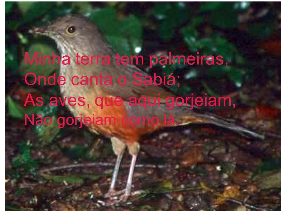 Minha terra tem palmeiras, Onde canta o Sabiá; As aves, que aqui gorjeiam, Não gorjeiam como lá.