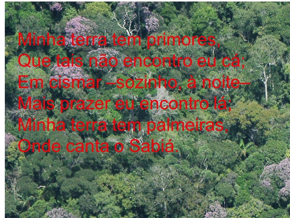 Minha terra tem primores, Que tais não encontro eu cá; Em cismar –sozinho, à noite– Mais prazer eu encontro lá; Minha terra tem palmeiras, Onde canta o Sabiá.