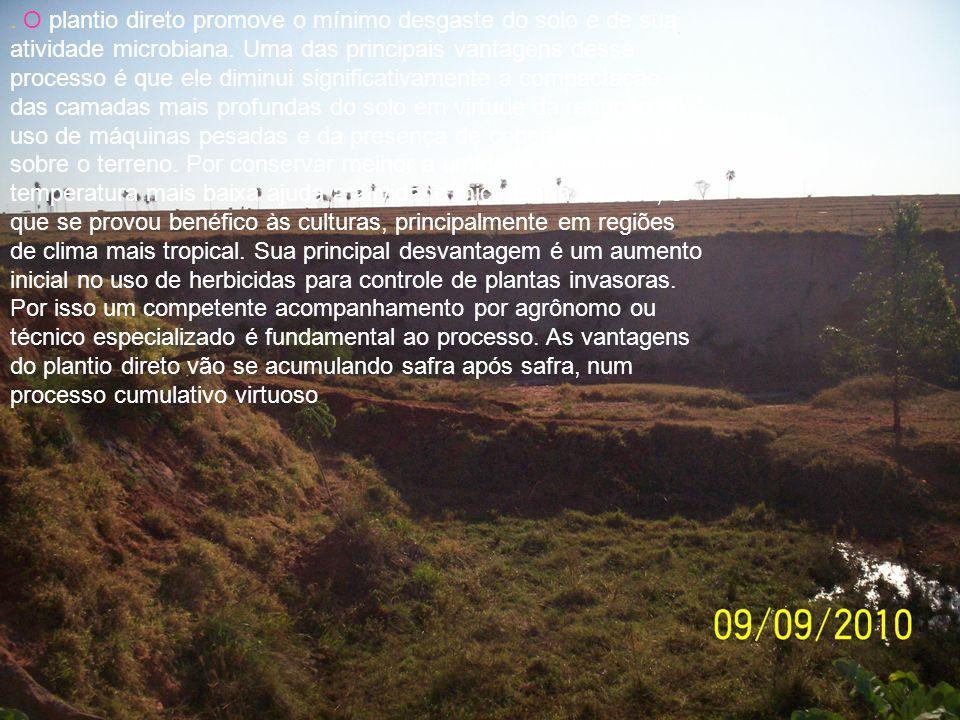 O plantio direto promove o mínimo desgaste do solo e de sua atividade microbiana.