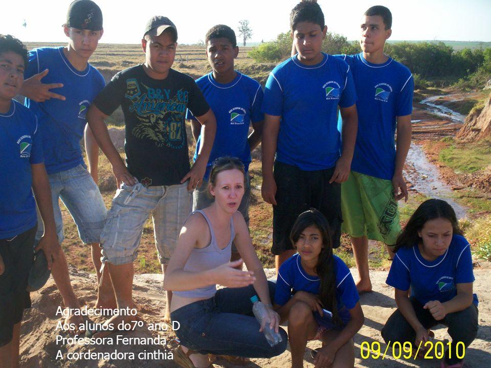 Agradecimento Aos alunos do7º ano D Professora Fernanda A cordenadora cinthia