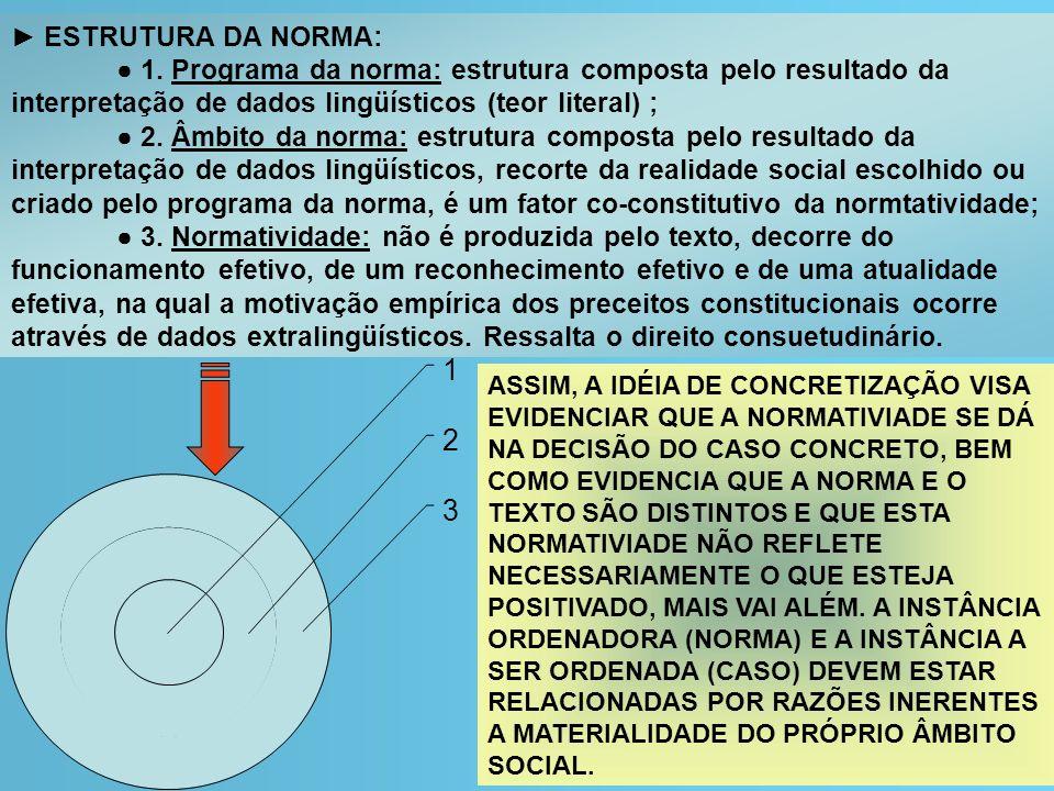 ► ESTRUTURA DA NORMA:● 1. Programa da norma: estrutura composta pelo resultado da interpretação de dados lingüísticos (teor literal) ;