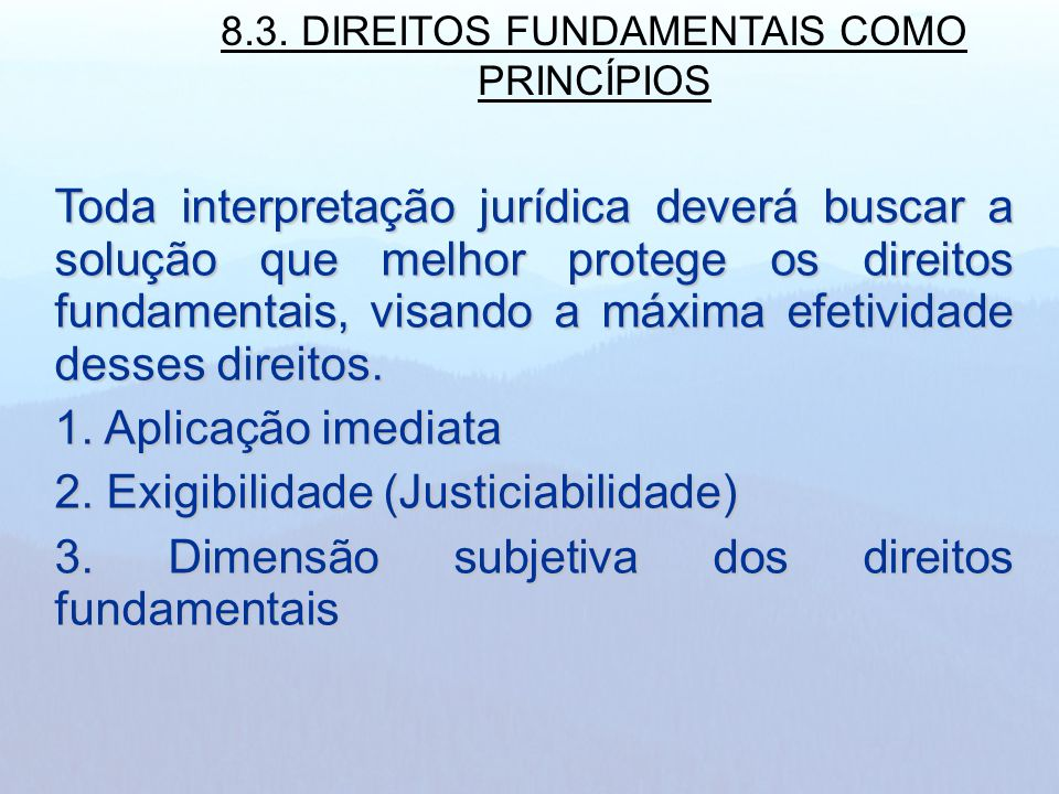 8.3. DIREITOS FUNDAMENTAIS COMO PRINCÍPIOS