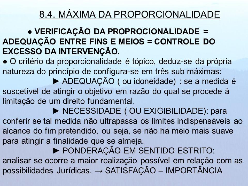8.4. MÁXIMA DA PROPORCIONALIDADE