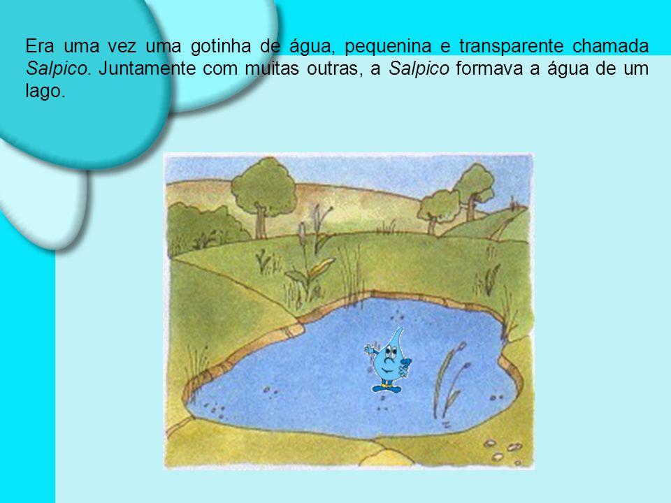 Era uma vez uma gotinha de água, pequenina e transparente chamada Salpico.