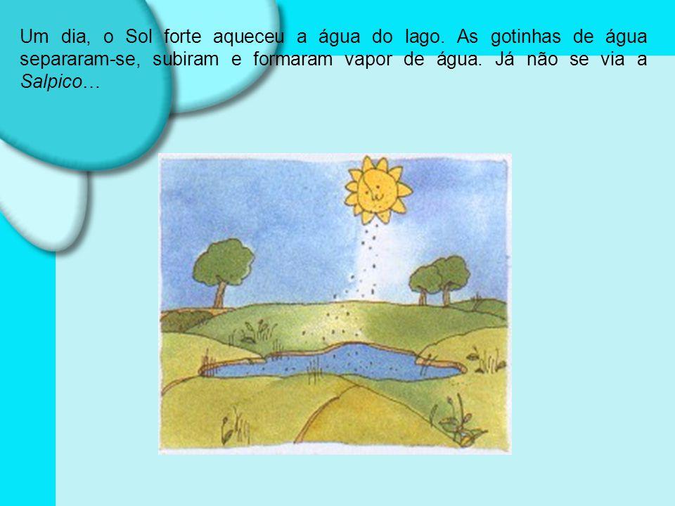Um dia, o Sol forte aqueceu a água do lago