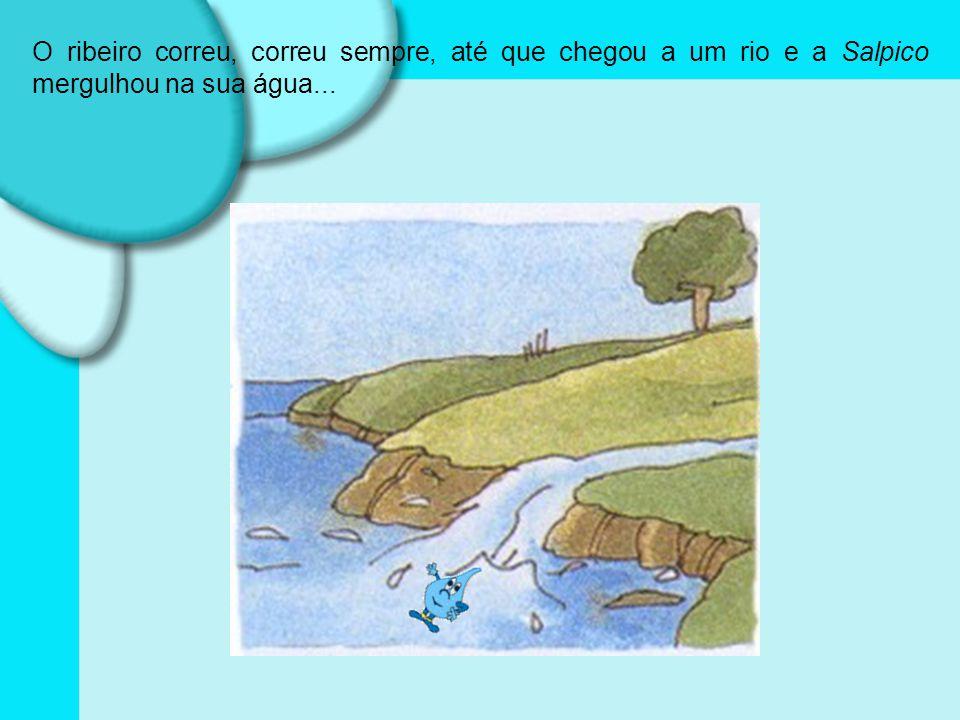 O ribeiro correu, correu sempre, até que chegou a um rio e a Salpico mergulhou na sua água...
