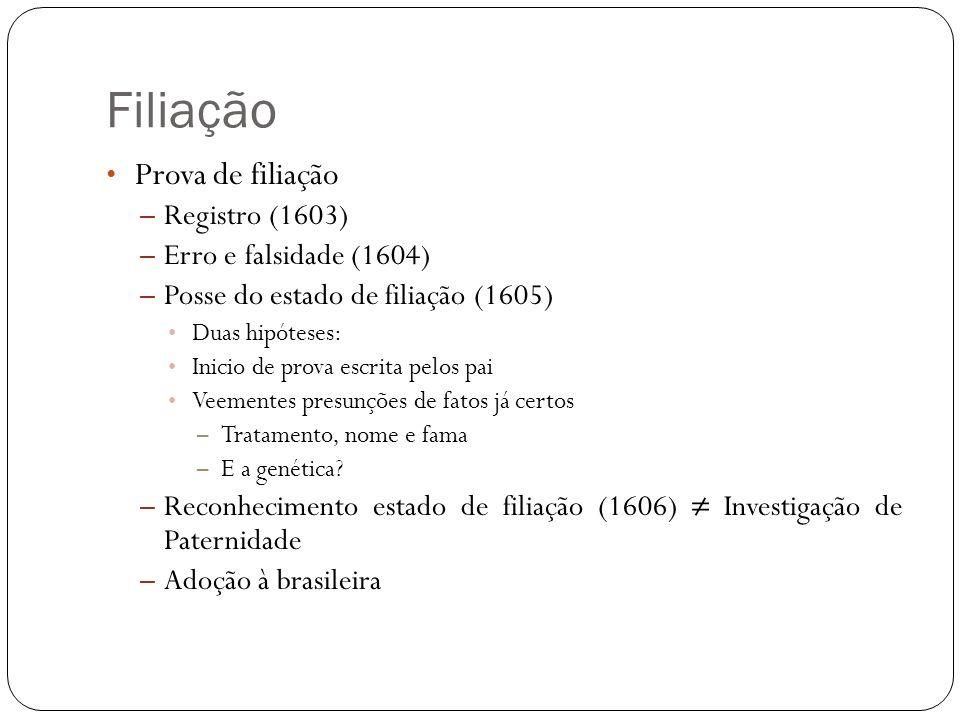 Filiação Prova de filiação Registro (1603) Erro e falsidade (1604)