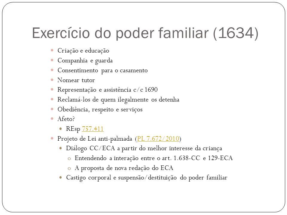 Exercício do poder familiar (1634)