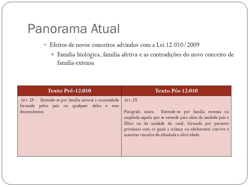 Panorama Atual Efeitos de novos conceitos advindos com a Lei 12.010/2009.