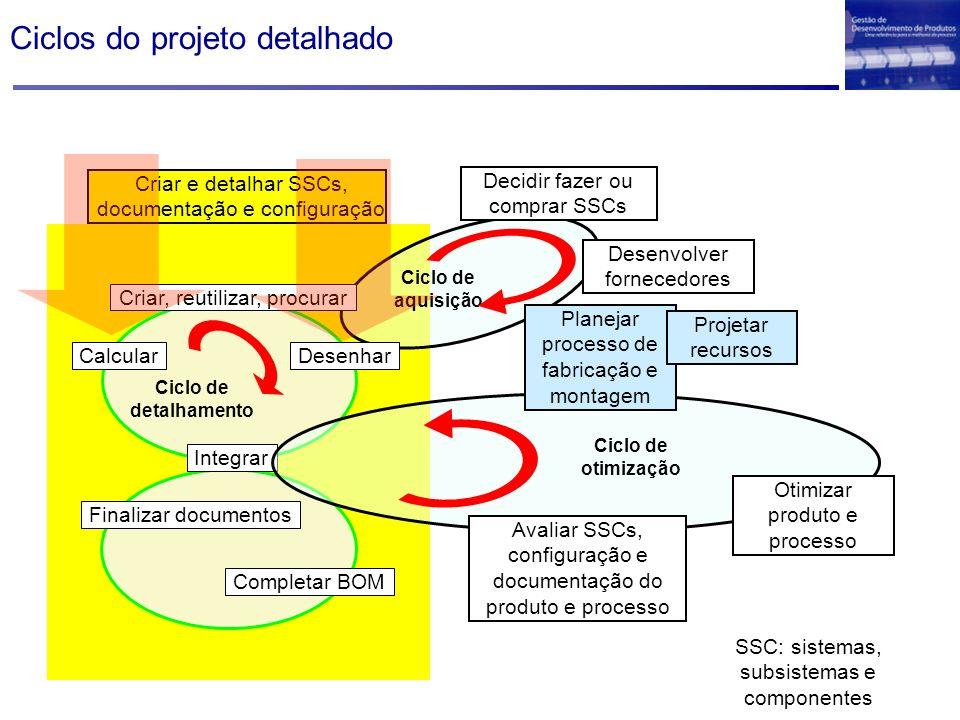 Ciclos do projeto detalhado