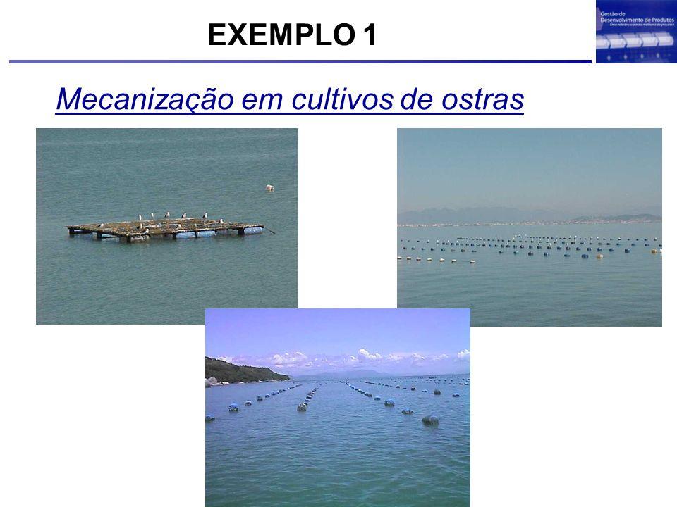 Mecanização em cultivos de ostras