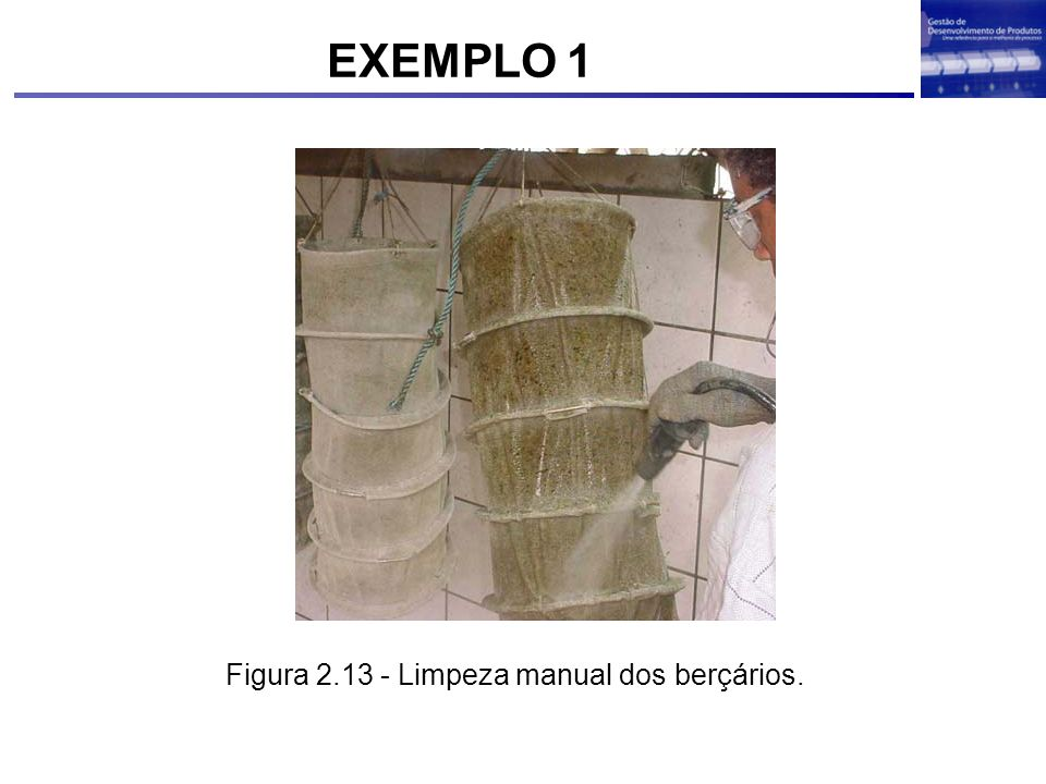 EXEMPLO 1 Figura 2.13 - Limpeza manual dos berçários.