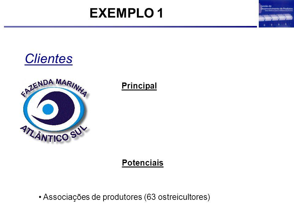 EXEMPLO 1 Clientes Principal Potenciais
