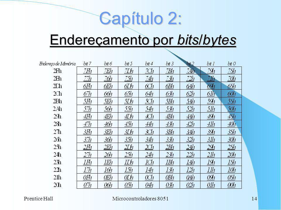 Capítulo 2: Endereçamento por bits/bytes
