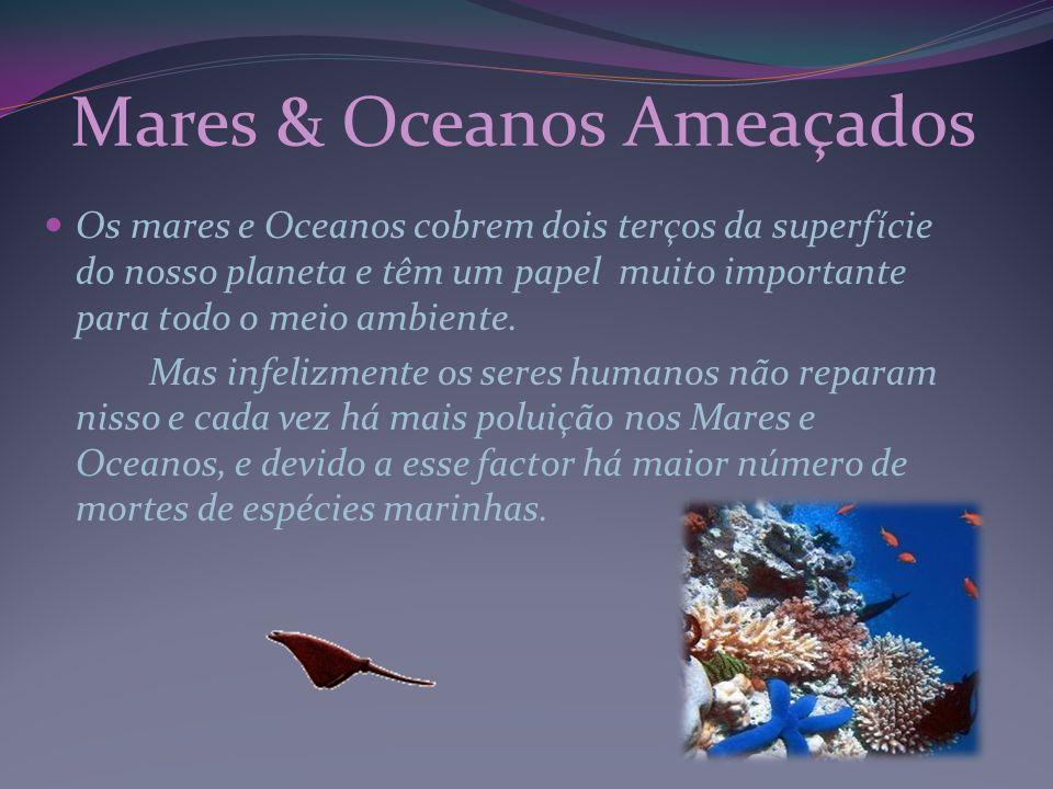 Mares & Oceanos Ameaçados
