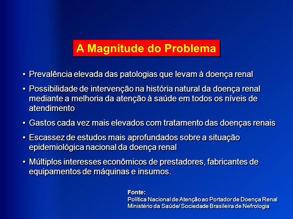 A Magnitude do Problema