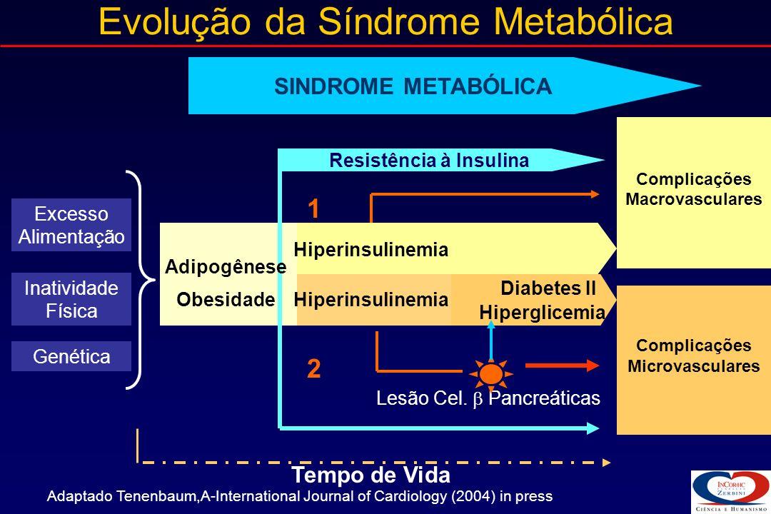 Evolução da Síndrome Metabólica