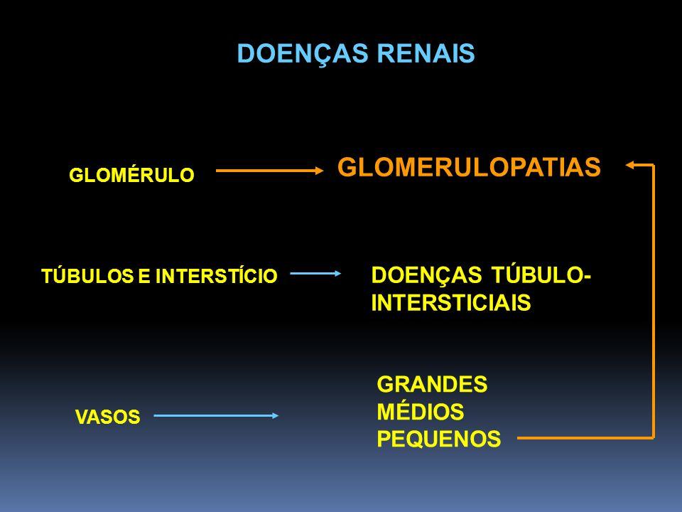 DOENÇAS RENAIS GLOMERULOPATIAS DOENÇAS TÚBULO- INTERSTICIAIS GRANDES