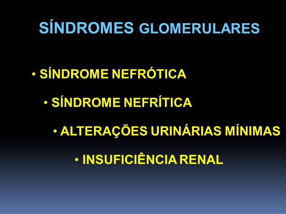 SÍNDROMES GLOMERULARES