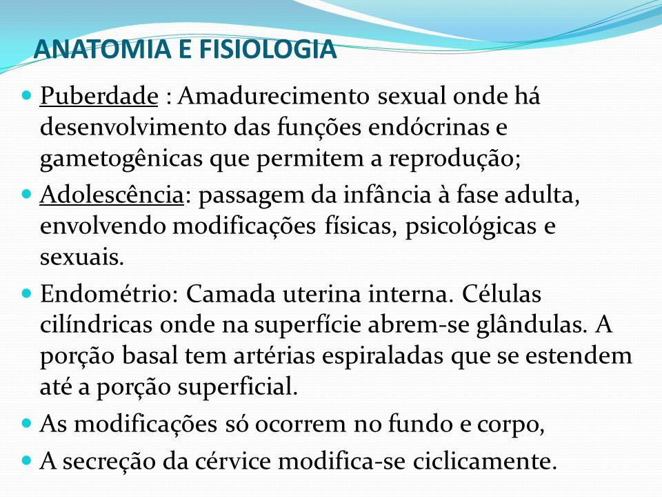 ANATOMIA E FISIOLOGIA Puberdade : Amadurecimento sexual onde há desenvolvimento das funções endócrinas e gametogênicas que permitem a reprodução;