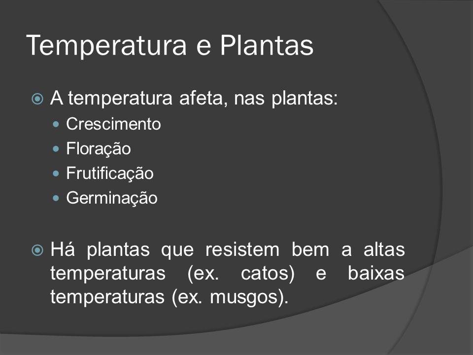 Temperatura e Plantas A temperatura afeta, nas plantas: