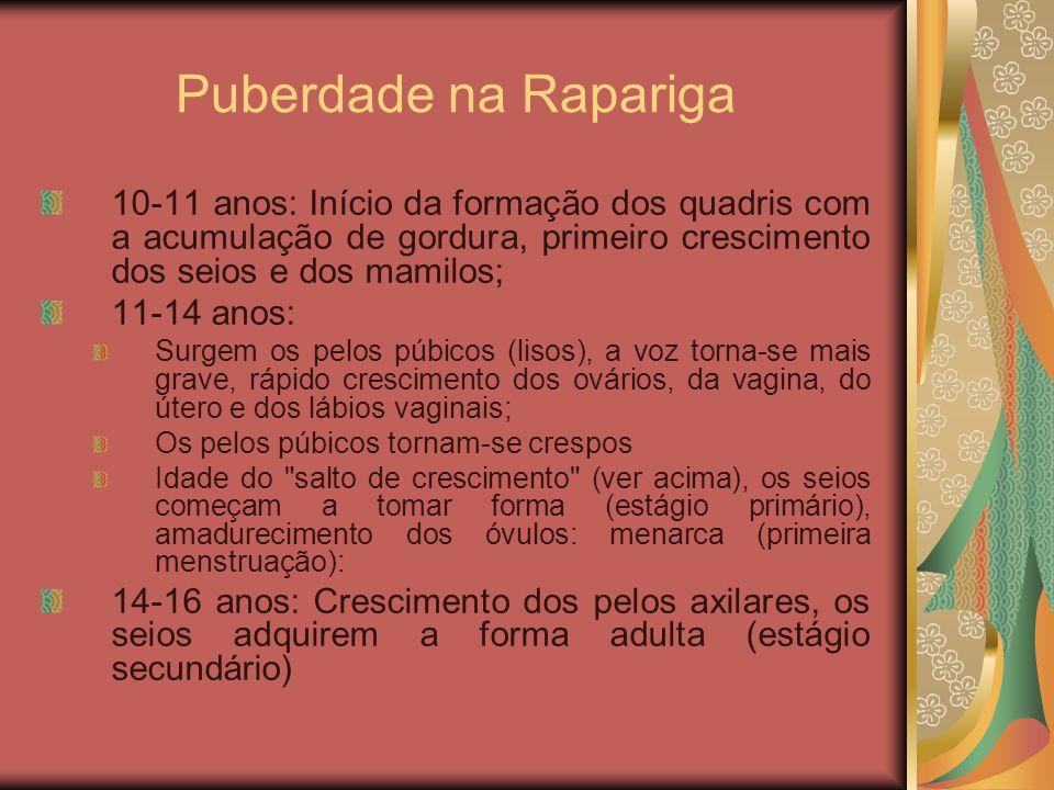 Puberdade na Rapariga 10-11 anos: Início da formação dos quadris com a acumulação de gordura, primeiro crescimento dos seios e dos mamilos;
