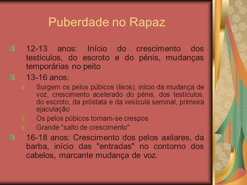 Puberdade no Rapaz 12-13 anos: Início do crescimento dos testículos, do escroto e do pénis, mudanças temporárias no peito.