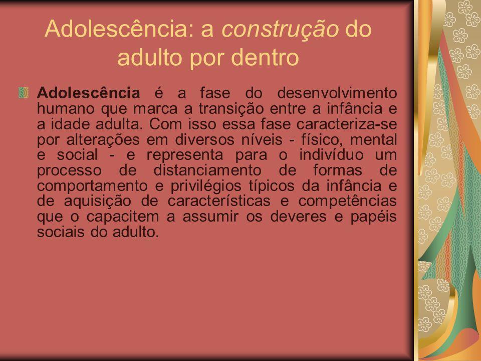 Adolescência: a construção do adulto por dentro