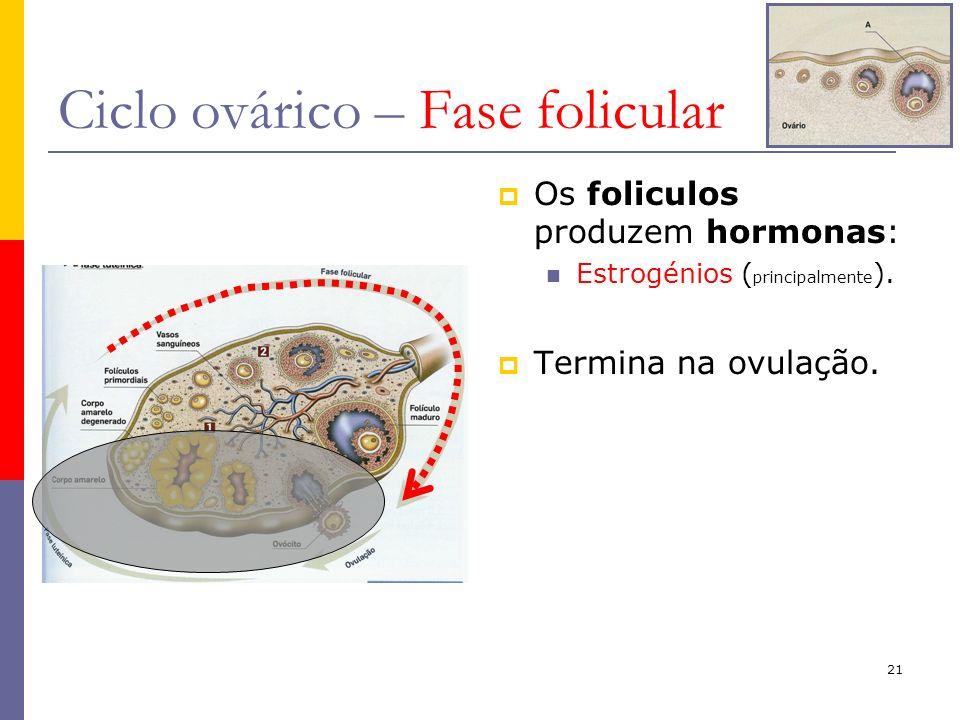 Ciclo ovárico – Fase folicular