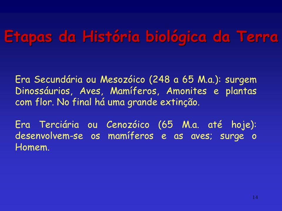 Etapas da História biológica da Terra