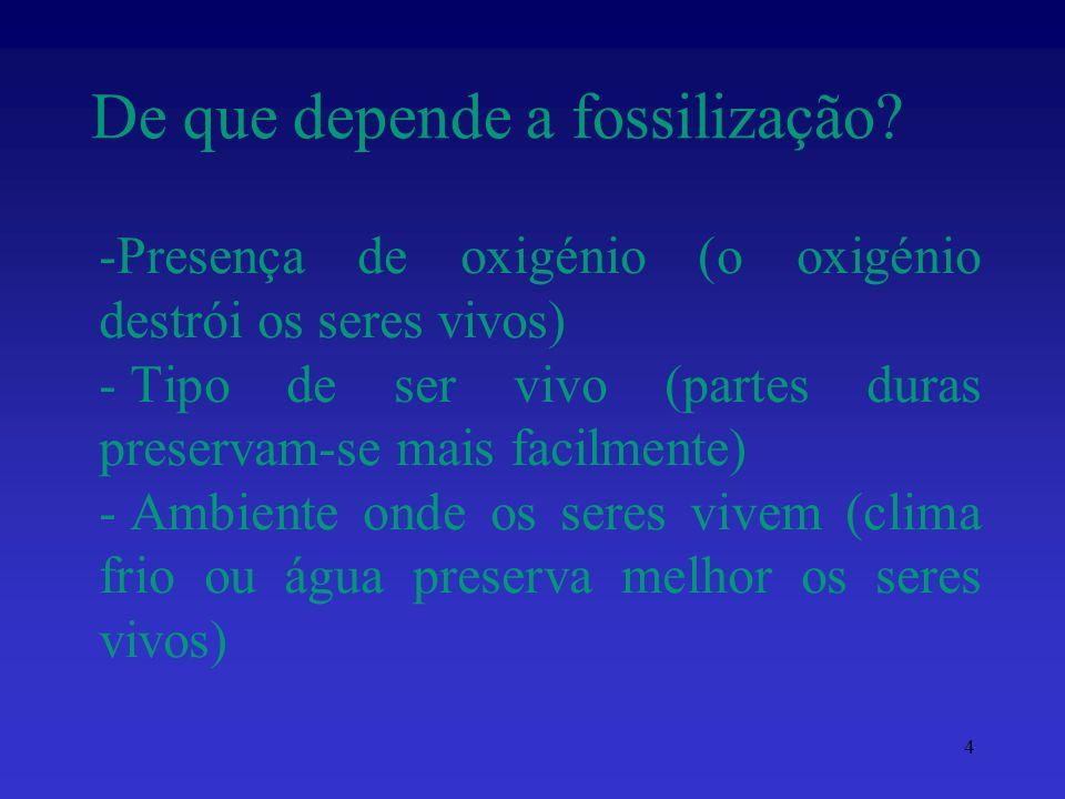 De que depende a fossilização