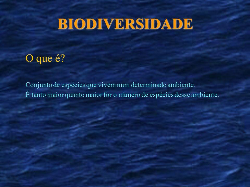 BIODIVERSIDADE O que é Conjunto de espécies que vivem num determinado ambiente.