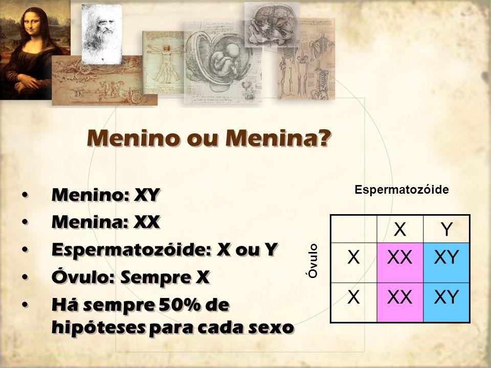 Menino ou Menina Menino: XY Menina: XX Espermatozóide: X ou Y