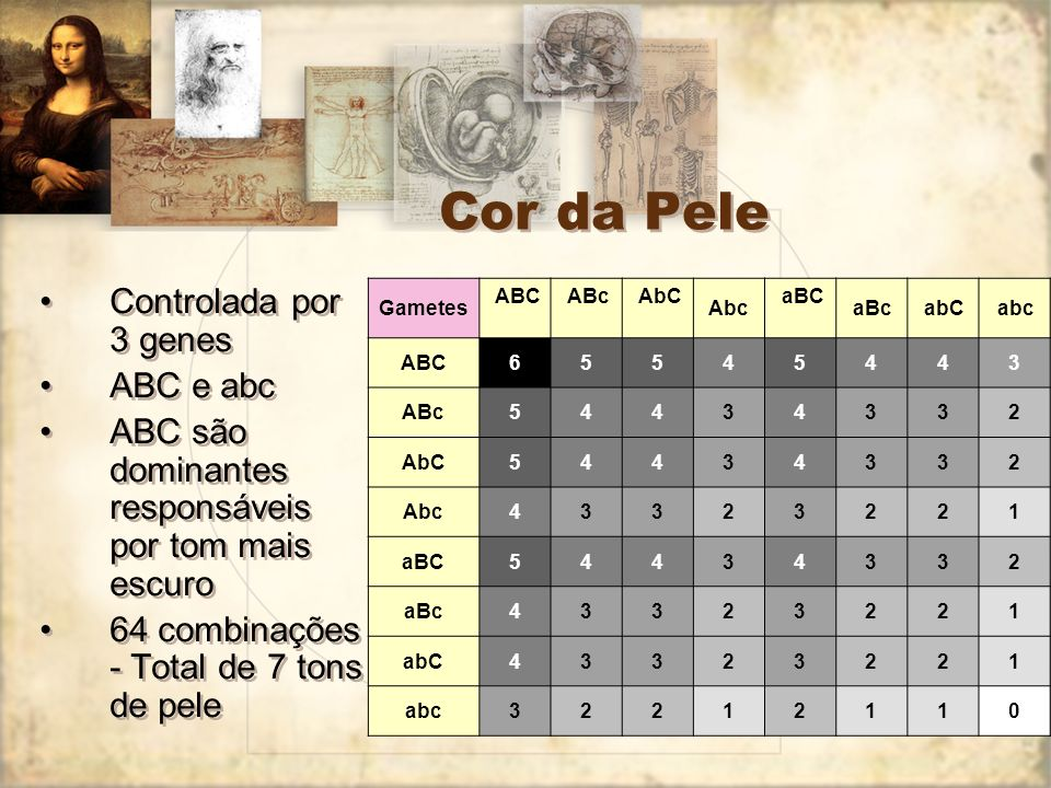 Cor da Pele Controlada por 3 genes ABC e abc