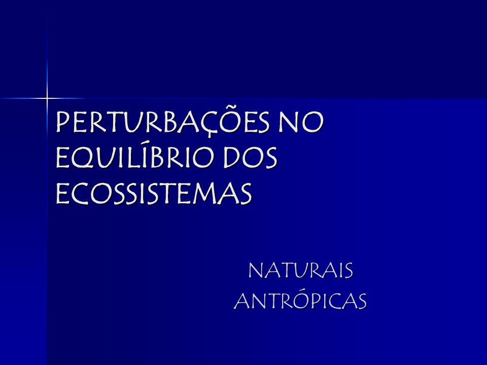 PERTURBAÇÕES NO EQUILÍBRIO DOS ECOSSISTEMAS