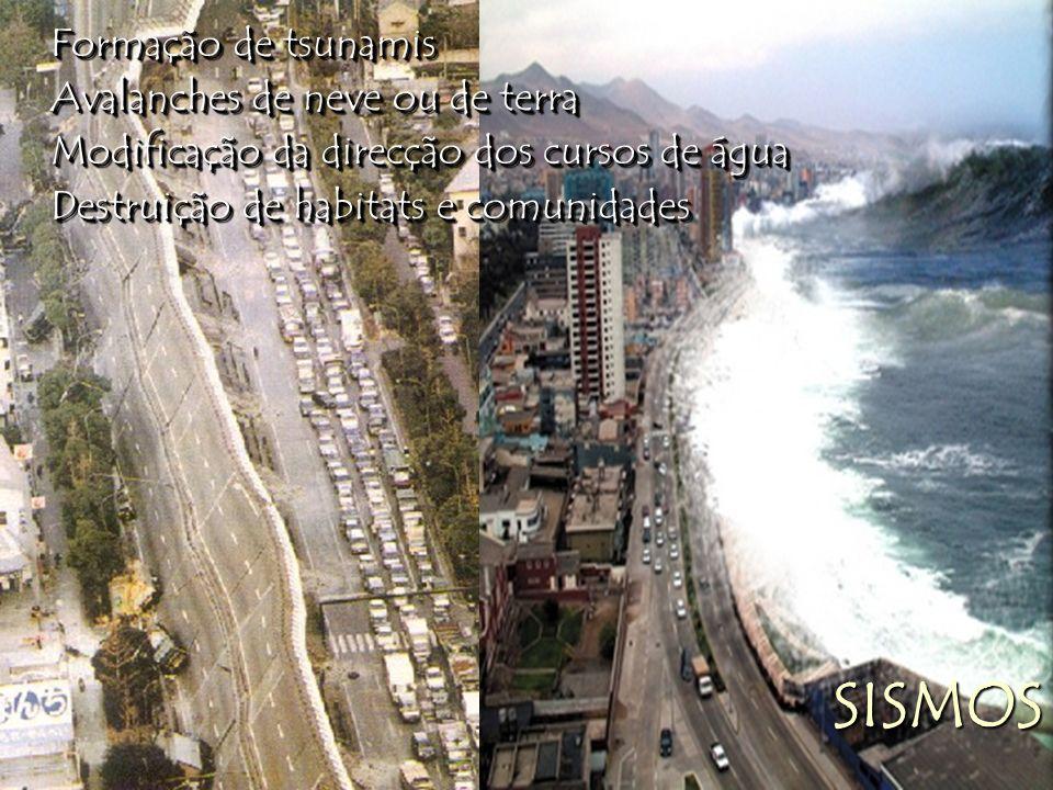 SISMOS Formação de tsunamis Avalanches de neve ou de terra