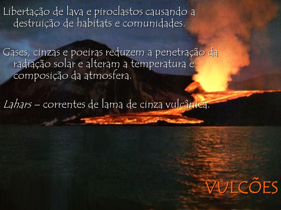 Libertação de lava e piroclastos causando a destruição de habitats e comunidades.