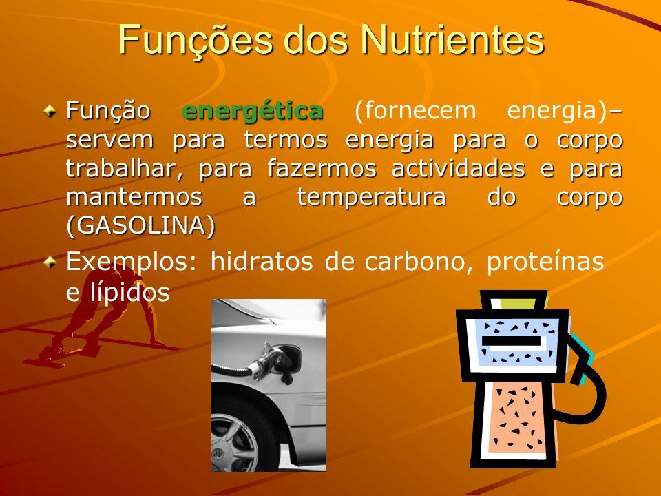 Funções dos Nutrientes