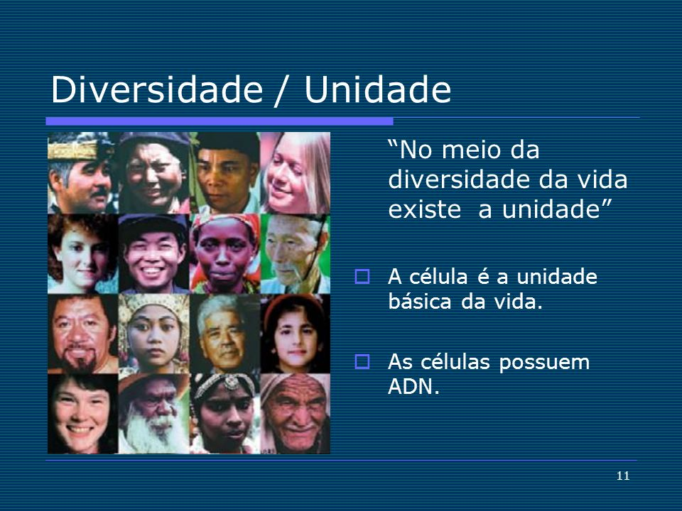 Diversidade / Unidade No meio da diversidade da vida existe a unidade A célula é a unidade básica da vida.