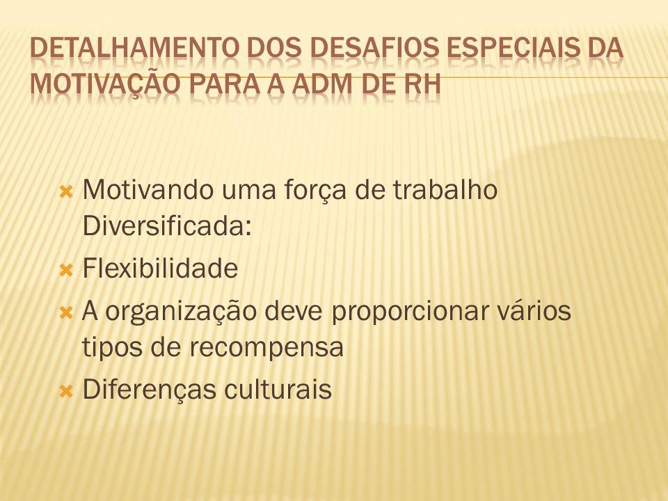 Detalhamento dos Desafios Especiais da Motivação para a ADM de Rh