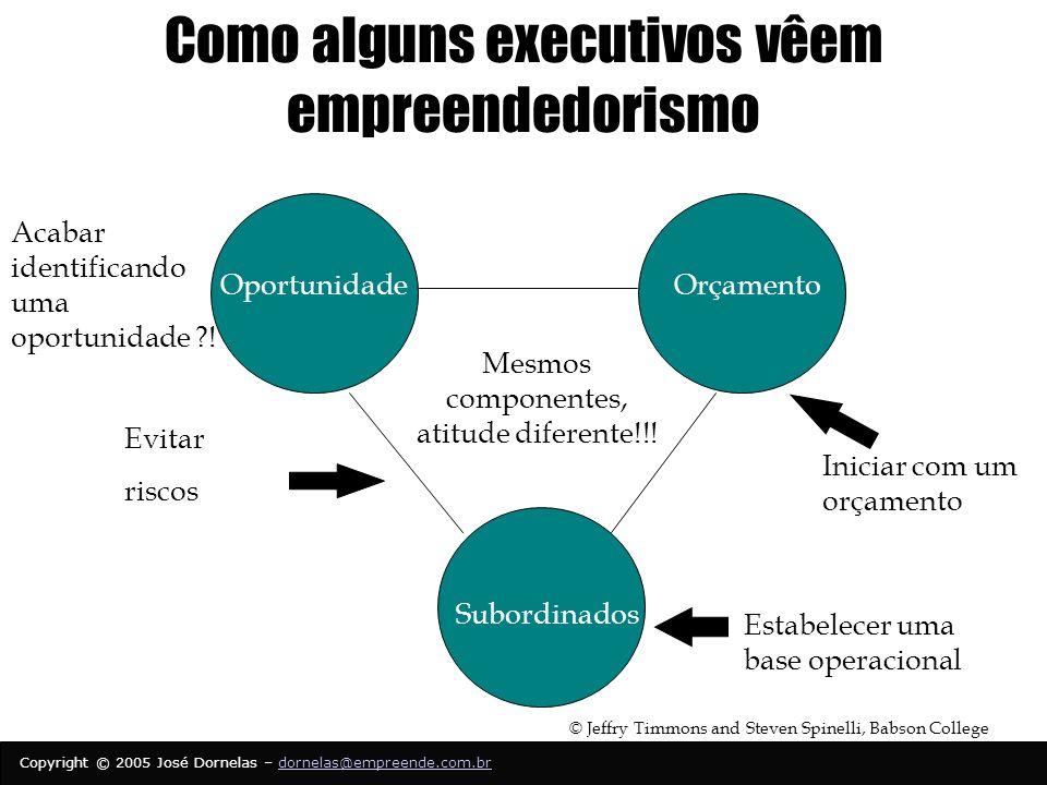 Como alguns executivos vêem empreendedorismo