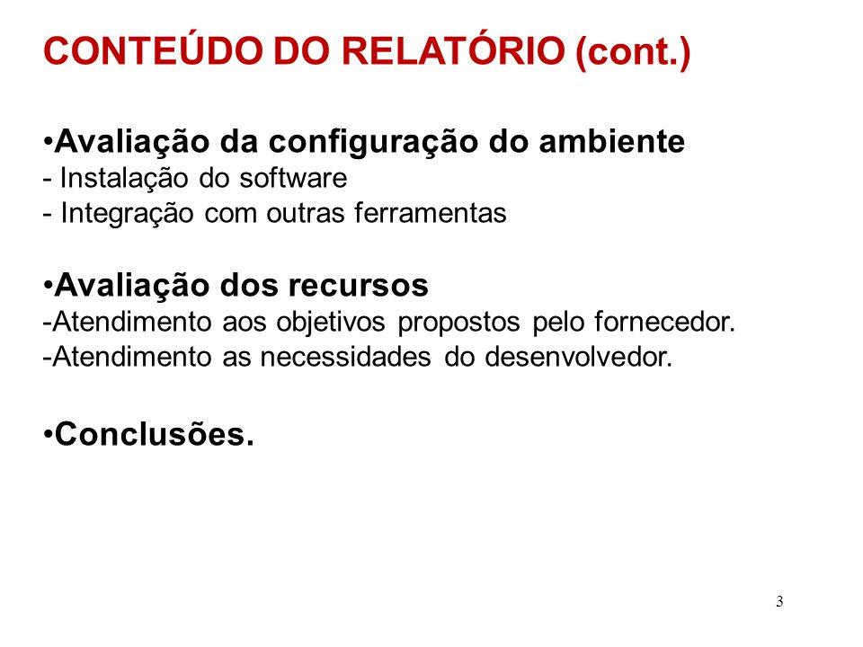 CONTEÚDO DO RELATÓRIO (cont.)