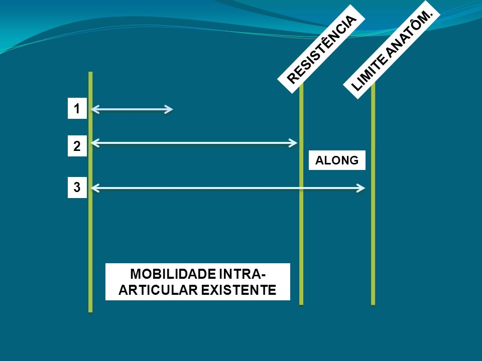 MOBILIDADE INTRA-ARTICULAR EXISTENTE