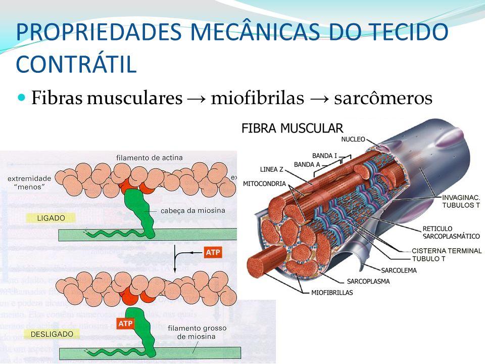 PROPRIEDADES MECÂNICAS DO TECIDO CONTRÁTIL