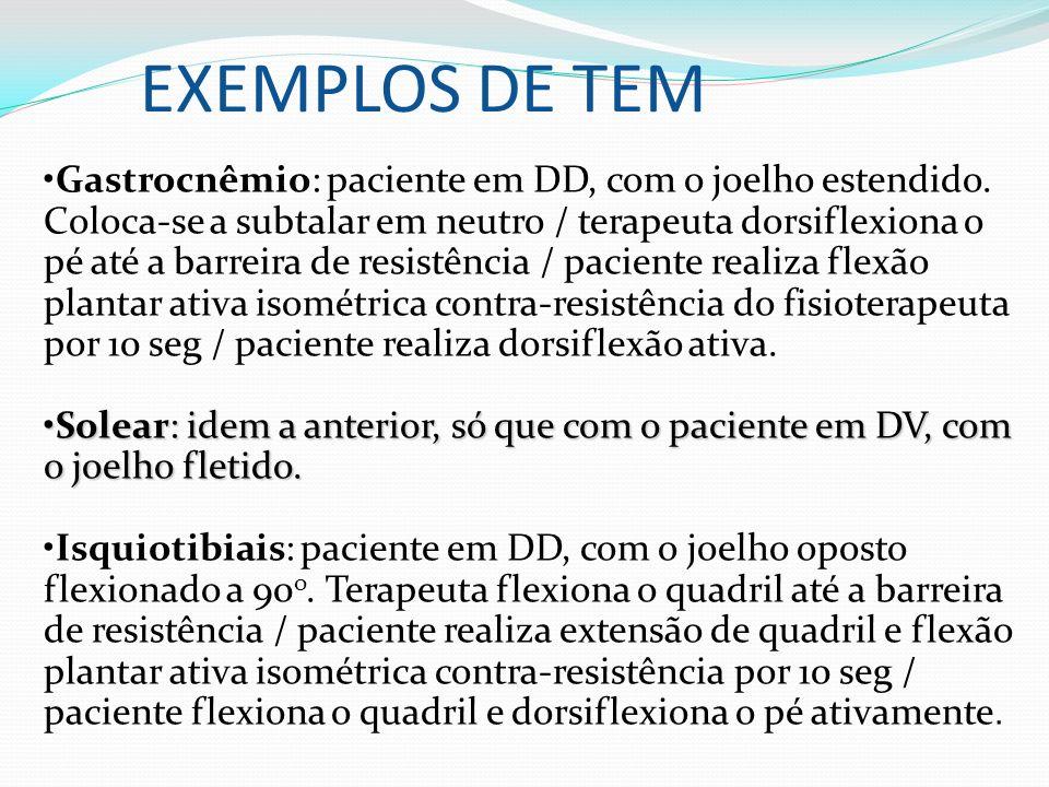 EXEMPLOS DE TEM