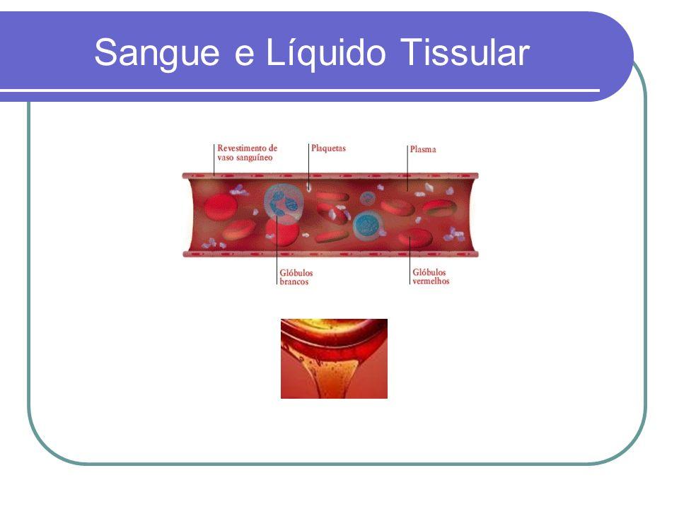 Sangue e Líquido Tissular