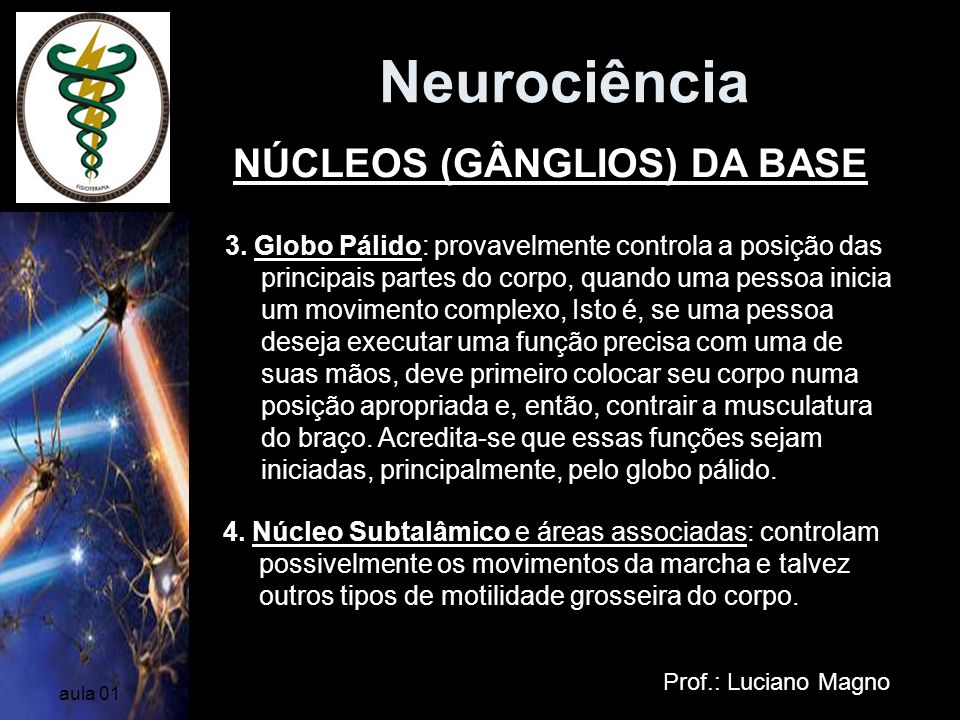 Neurociência NÚCLEOS (GÂNGLIOS) DA BASE