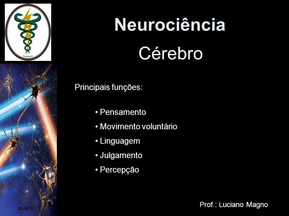 Neurociência Cérebro Principais funções: Pensamento