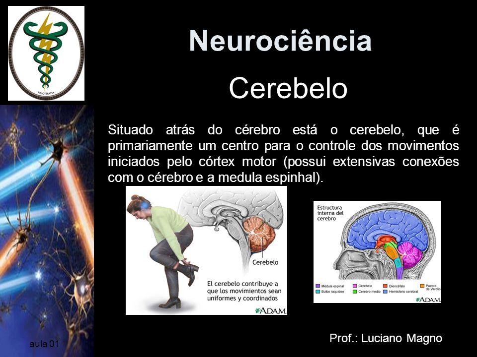 Neurociência Cerebelo