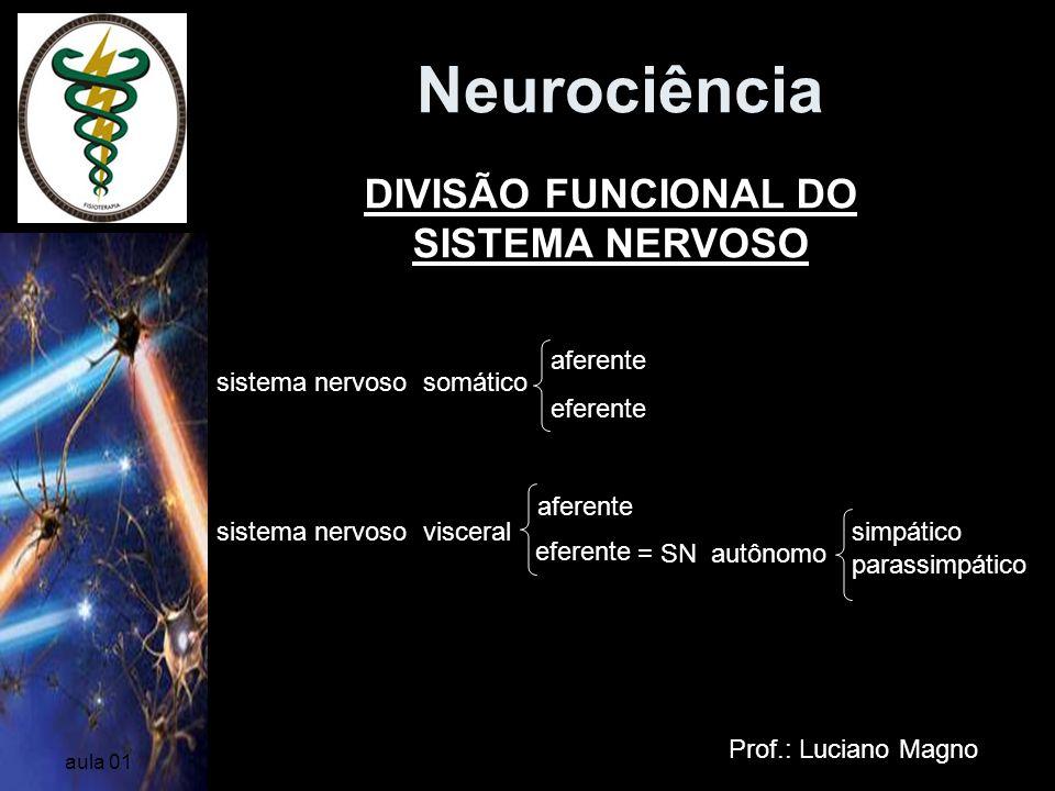 DIVISÃO FUNCIONAL DO SISTEMA NERVOSO